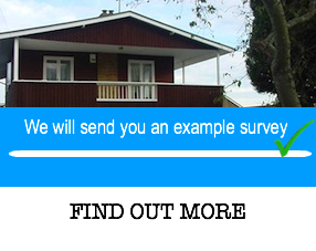 We will send you an example survey